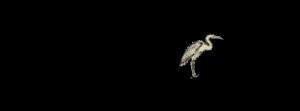 Heron-Fine Foods-logo